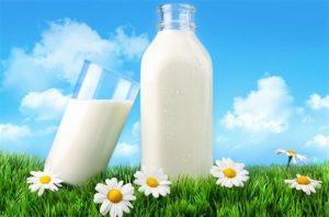 Milk Bar for Sale