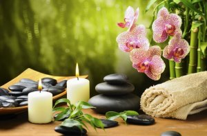 Massage Shop for Sale Mulgrave