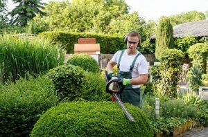 Gardening Business for Sale