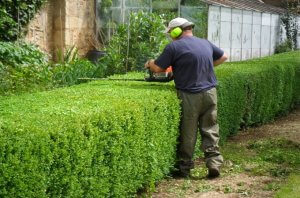 Sell My Gardening Business Melbourne