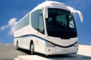 Melbourne Bus Company for Sale